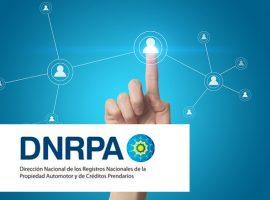 DNRPA: Disposición 174/19