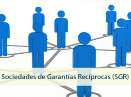 Secretaría de Emprendedores y de la Pequeña y Mediana Empresa: Resolución 256/19