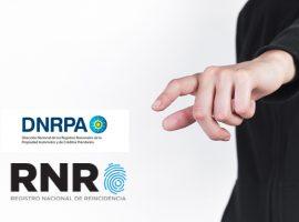 DNRPA: Disposición 193/19